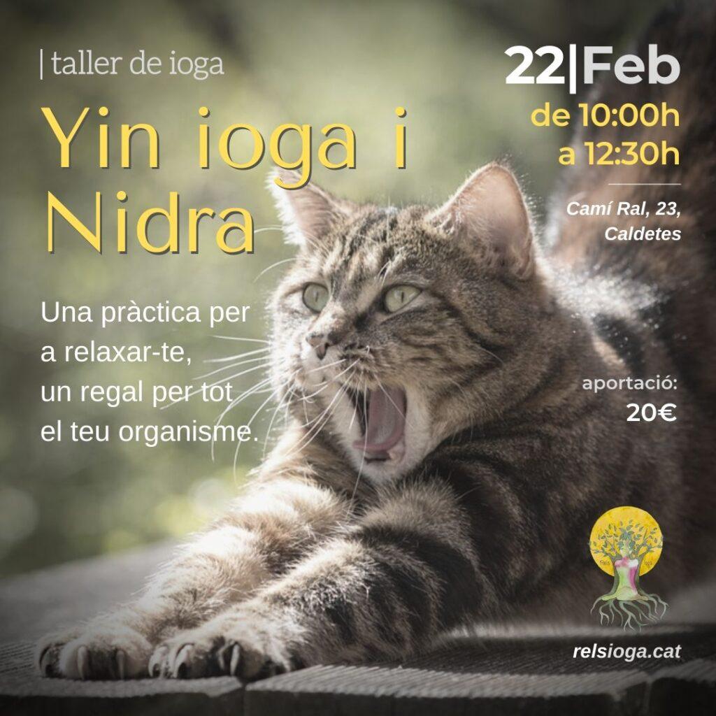 Yin Yoga i Nidra | RELS IOGA | yoga, terapias, nutrición | Caldes d'Estrac (Caldetes) Maresme (Barcelona)