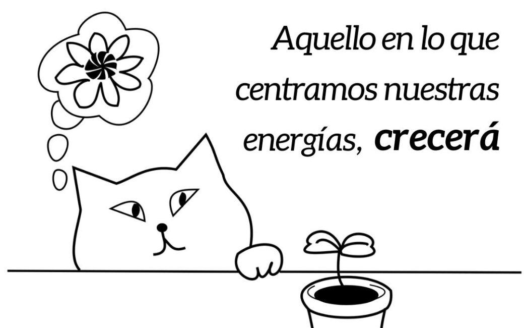 Aquello en lo que centramos nuestras energías, crecerá   RELS IOGA