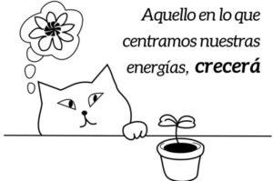 Aquello en lo que centramos nuestras energías, crecerá | RELS IOGA